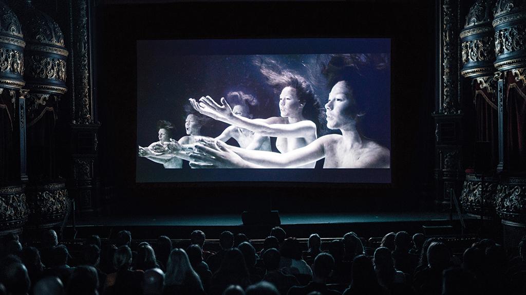 Cork-Film-Festival-2018-at-the-Everyman-9-18-Nov